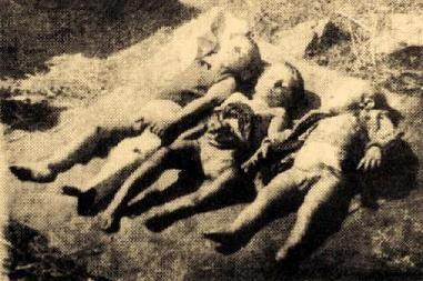 Rzeź wołyńska - dzieci pomordowane przez Ukraińców